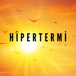 Hipertermi 300x300 - Isı Tedavisi (Hipertermi) ile Kanser Tedavisi Mümkün müdür?