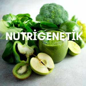Nutrigenetik 300x300 - Nutrigenetik, Genlere göre Beslenme