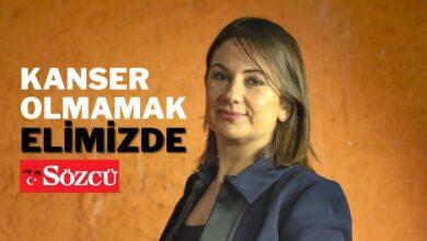 Bp Site 6 390x220 - Kanser Olmamak Elimizde - Prof. Dr. Berrin Pehlivan