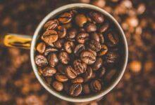 BP SITE 1 220x150 - Kafein Zararlı Mı?