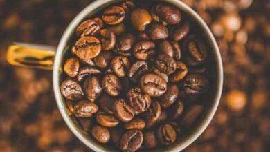 BP SITE 1 390x220 - Kafein Zararlı Mı?