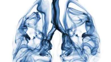 BP SITE 2 390x220 - Mezotelyoma Kanseri Nedir?